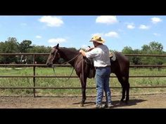 ▶ The Safest and Easiest Way to Mount a Horse - YouTube. Though preferably, I always ALWAYS use a mounting block, because it puts less strain on the horses' backs! However, this is pretty sound advice when riding western and mounting from the ground.