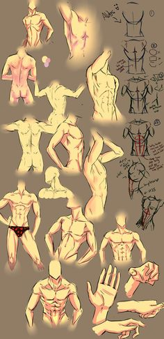 More anatomy tips by moni158 on deviantART. Anatomy, male body, abs