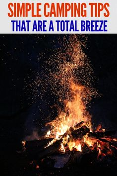 Take note of these awesome camping tips to make your next trip a breeze. From learning how to camp easier with kids, what to pack, and even RV camping tips and tricks. Solo Camping, Rv Camping Tips, Camping For Beginners, Camping With Kids, Camping Meals, Family Camping, Tent Camping, Campsite, Outdoor Camping