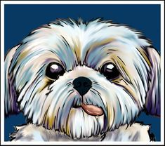 shih tzu dog Art Print by spetenfia Shih Tzu Hund, Perro Shih Tzu, Shih Tzu Puppy, Shih Tzus, Yorkie, Puppy Drawing, Lhasa Apso, Dog Paintings, Dog Art