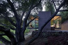 Swatt Miers Architects completed in 2009 this Tea House design in Silicon Valley, California. Actually they designed three tea houses in a grove of Oak tree Farnsworth House, Cantilever Architecture, Residential Architecture, Gazebo, Architects Journal, Glass Pavilion, Live Oak Trees, California Homes, House Architecture