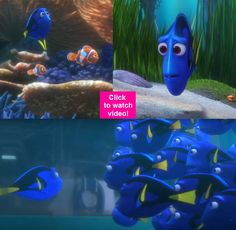 Finding Dory trailer: Finding your way back home never felt so EMOTIONAL even for a fish!