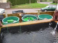 Diy concrete pond with pool filter ponds water features for Koi pond pool filter