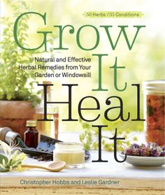 Grow It Heal It - It's easy to grow an instant herbal remedy in a container or other small space.