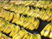 Healthiest Time to Eat a Banana According to Its Ripeness Advantages Of Banana, Ginger Water, Banana Drinks, Uric Acid, Time To Eat, Healthy Drinks, 3d Printing, Health Care, Banana