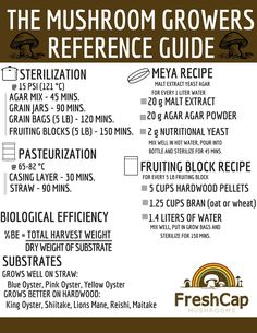 The Mushroom Growers Quick Reference Guide Mushroom Guide, Mushroom Grow Kit, Mushroom Recipes, Growing Mushrooms At Home, Garden Mushrooms, Hydroponic Gardening, Gardening Tips, Urban Gardening, Urban Farming