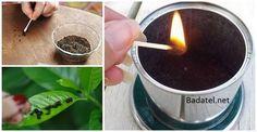 Ako použiť spodok z kávy na odpudenie hmyzu, hnojenie záhradky a iné veci Aj vy po dopití tureckej alebo prekvapkávanej kávy použité zvyšky vyhadzujete? Pozrite sa, čo všetko by ste s nimi ešte dokázali urobiť.