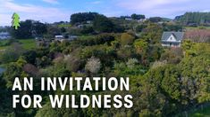Tour a Thriving Permaculture Food Forest - An Invitation for Wildness Farm Gardens, Outdoor Gardens, Permaculture Farming, Earth Goddess, Forest Garden, Grow Your Own Food, Nature Reserve, Dream Garden, Mother Earth