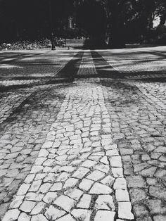 Tour City of Neighborhoods 2, in Estrela's Garden. #TukTukTejo #JardimdaEstrela