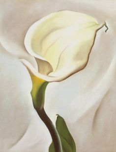 Calla by Georgia O'Keeffe