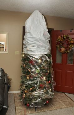 Easiest and quickest way to store a Christmas tree? Saran