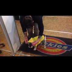 Instagram #skateboarding video by @mariguana_pasta_king - First 60 second video @polo2211 @tompage16 @0114kizdog @willlester93 @theyorkshirepeg #skateboarding. Support your local skate shop: SkateboardCity.co