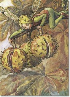 Cicely Mary Barker - Flower Fairies of the Autumn - The Horse Chestnut Fairy