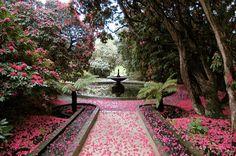 The Preppy Fox — stately-homes-of-england: Holker Hall gardens Persephone, Damien Bloodmarch, Olgierd Von Everec, Interior Exterior, Lake District, Outdoor Gardens, Indoor Garden, Landscape Design, Garden Design