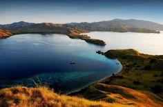 Komodo et ses animaux préhistoriques : L'Indonésie comme vous ne l'avez jamais vue - Linternaute.com Voyager