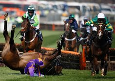 Grand National 2015: How grand can a race be when some horses snap or die before finishing? - Comment - Voices - The Independent