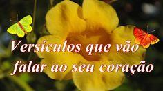 Carla Santana ♥♥ Versiculos que vão falar ao seu coração