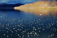 Top 10 Must-see Holy Lakes in Tibet | Chinese eye