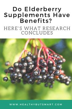 Do Elderberry Supplements Have Benefits? Here's What Research Concludes