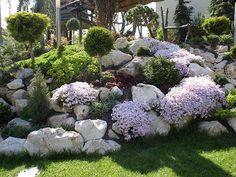 """Képtalálat a következőre: """"meredek sziklakert"""" Beautiful Gardens, Plants, Diy, Patio, Google, Gardens, Bricolage, Do It Yourself, Plant"""