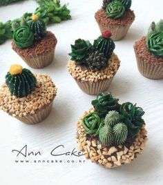 Anne Cake + Buttercreme Blumenkuchen Deep Fleshy Cup Cake – Essen – – Cupcakes Rezept - lecker - The Effective Pictures We Offer You About cactus A quality picture can tell you many things. Cactus Cupcakes, Succulent Cupcakes, Cactus Cake, Garden Cupcakes, Pretty Cakes, Cute Cakes, Beautiful Cakes, Amazing Cakes, Delicious Desserts