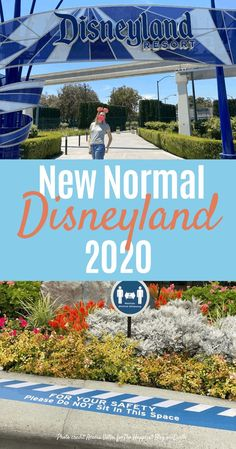 Disneyland's new normal for the rest of 2020. #Disneyland Disneyland Tickets, Disneyland Tips, Disney Vacations, Disney Trips, Downtown Disney California, Disney California Adventure Park, California Travel