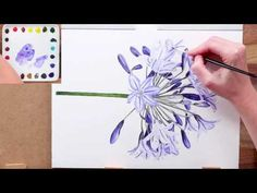 How to paint a realistic rose flower in watercolour - YouTube