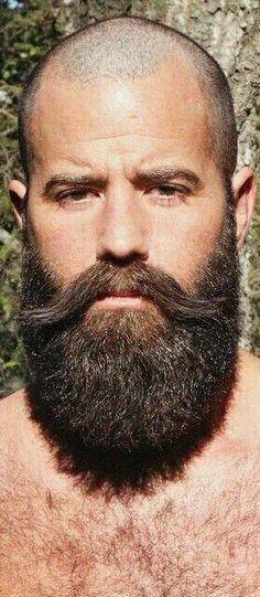 Bald Men With Beards, Bald With Beard, Great Beards, Long Beards, Beard Love, Awesome Beards, Bald Man, Men Beard, Hairy Men