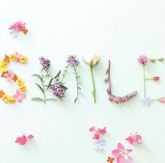 Wallpaper Nature Flowers, Flower Phone Wallpaper, Heart Wallpaper, Flower Words, Flower Quotes, Pressed Flower Art, Choose Joy, Arte Floral, Hello Spring