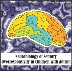 Your Therapy Source: Neurobiology of Sensory Overresponsivity in Children with Autism. Pinned by SOS Inc. Resources. Follow all our boards at pinterest.com/sostherapy/ for therapy resources.