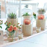 succulents in vases.  love.