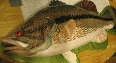 Fish Shaped Birthday Cake Httpwwwosnnnetgreen Room97223 Happy