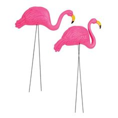 Spray painted gold and these would be perfect!! 2 X-large Pink Flamingo 3-dimensional Yard Ornaments Unknown http://www.amazon.com/dp/B0038I9V60/ref=cm_sw_r_pi_dp_EN94ub06V2PTR