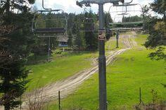 Downhill Wierchomla