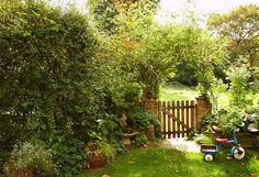 love overgrown Cottage gardens w/county fences or w/out