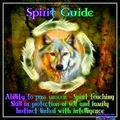 73 Best Aj S Spirit Animal The Alpha Lone Wolf Cherokee Nation