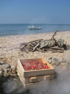 Clambake, summer fun and sand in your suit!!