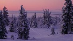 Another stunning view of Lapland...