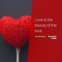 What is love to you? #JimMorrison http://ift.tt/1PGu1zA