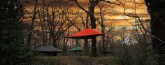 Tentsile - because the world is not flat! Portable Tree Tents!