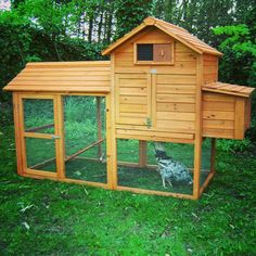 Homestead Plus available at Durham Hens #hens #chickens #chickencoops #SBS