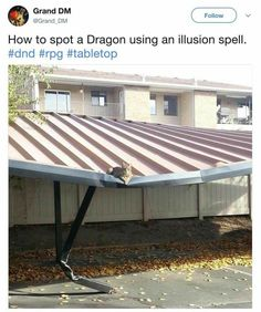 How to spot a dragon using an Illusion spell | cat | dungeons and dragons
