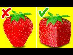 47 INCREDIBLE FRUIT TRICKS - YouTube Incredible Toy, Awesome, Cut Pineapple, Girly, Useful Life Hacks, Food Hacks, Diy Hacks, 5 Minute Crafts, Youtube