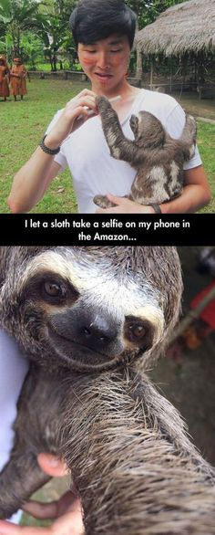 "I thought he ""let"" the sloth claw him in the face too. But then I looked closer lol"