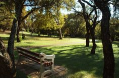 Take a trip to the Walter Sisulu Botanical Garden. Pretoria, Botanical Gardens, Tourism, Africa, Activities, Outdoor Decor, Green, Travel, Beautiful