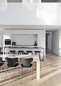 Modern Functionalism   Thue Krog Andersen Architects
