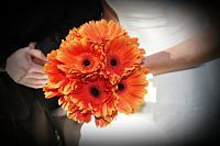 Orange Gerbera Daisy Bouquet by JulieZDesignZ, LLC