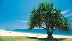 Google Image Result for http://www.weekendsfortwo.com.au/WeekendsEd42/Sunshine-Coast-web-images/HappyValley,Caloundra_fmt.jpeg