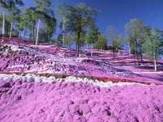 22 Najkrajšie sfarbených miest na Zemi