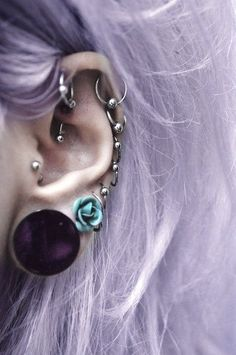 If my piercing fever goes on, I will probably end up like this one day. A bunch of helix piercings, a rook, a tragus and a few lobes. Piercing Plug, Cool Piercings, Piercing Tattoo, Body Piercing, Cartilage Piercings, Ear Gauges, Second Piercing, Septum, Piercing Types